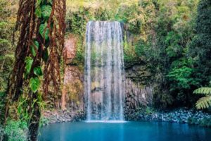 3 fun things to do when visiting Cairns